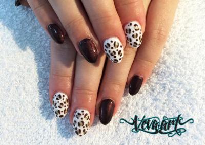 Čokoládový gepard