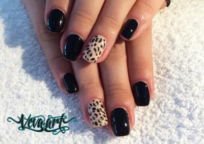 Černý gepard