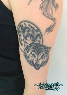 Vlk a měsíc